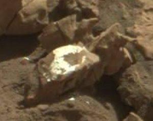 Mars backbone