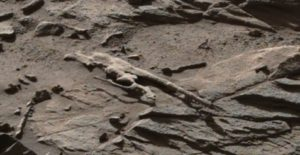 A strange looking creature or structure of Mars
