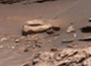 Another car-like object on Mars