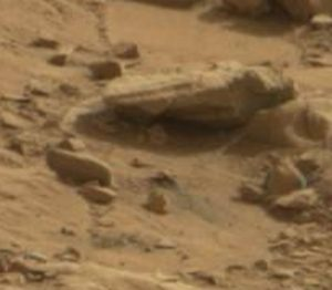 Mars stone animal with tail
