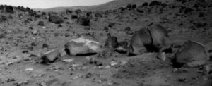 Stone animals on Mars