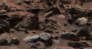 Debris with a dead Martian?